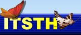 vendor banner
